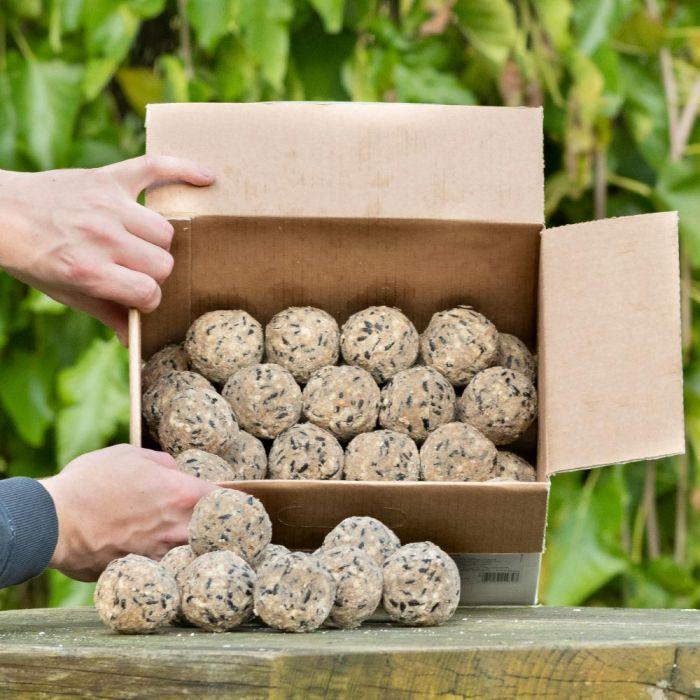 Ultimate Fat Balls - Box of 50