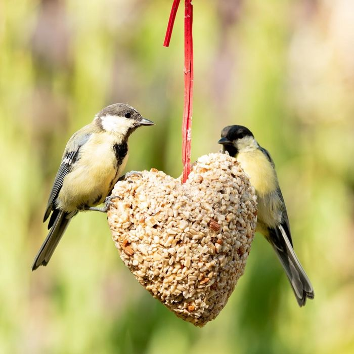 Hanging Peanut Heart