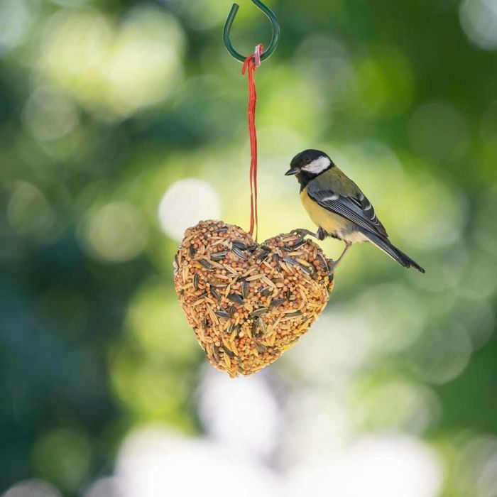 Seed Heart for Birds
