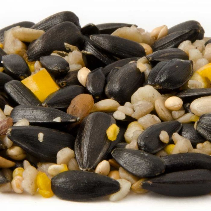 Hi-Energy Seed Mix for Birds