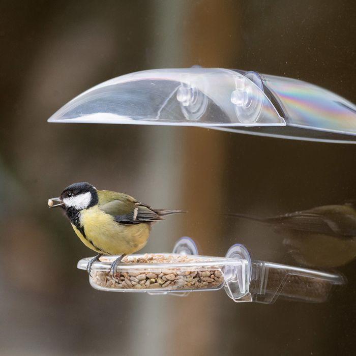 Bordeaux Window Bird Feeder