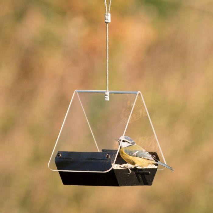 Perth Bird Feeder