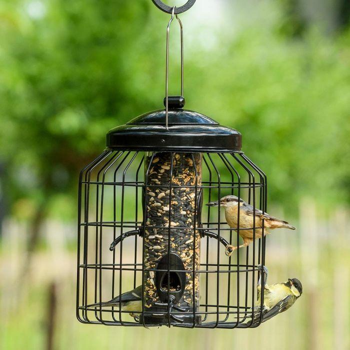 Brussels Seed Bird Feeder Guardian Pack