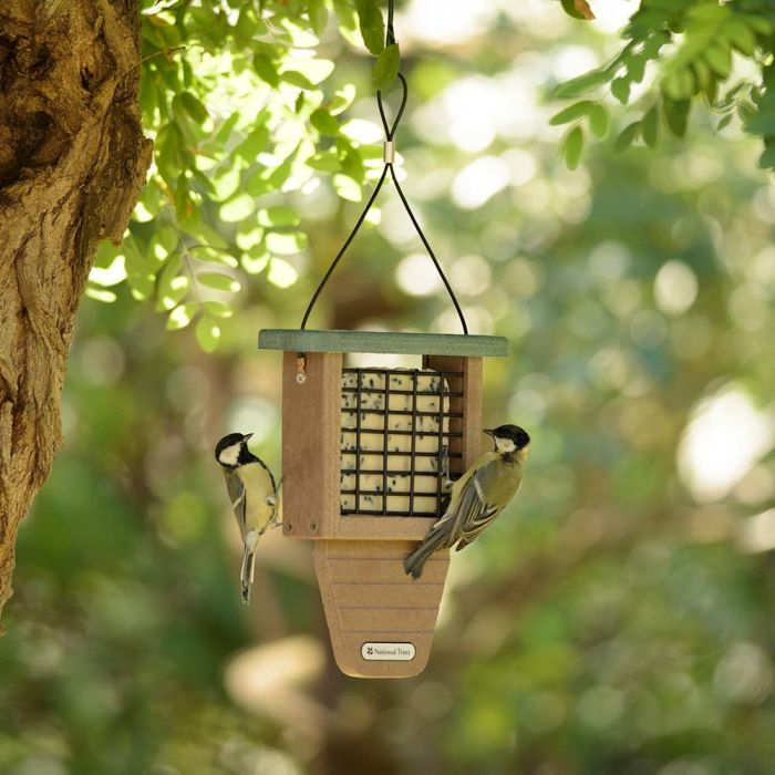 National Trust Monte Rosa Recycled Peanut Cake Feeder