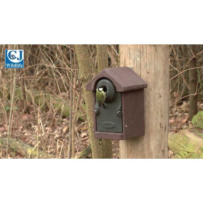WoodStone®  Bilbao 32mm Nest Box