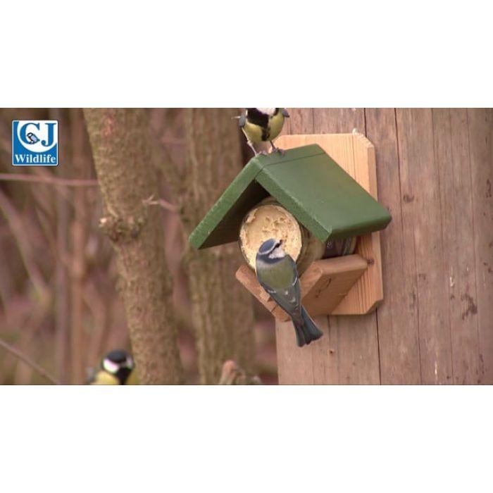 Original Peanut Butter for Birds
