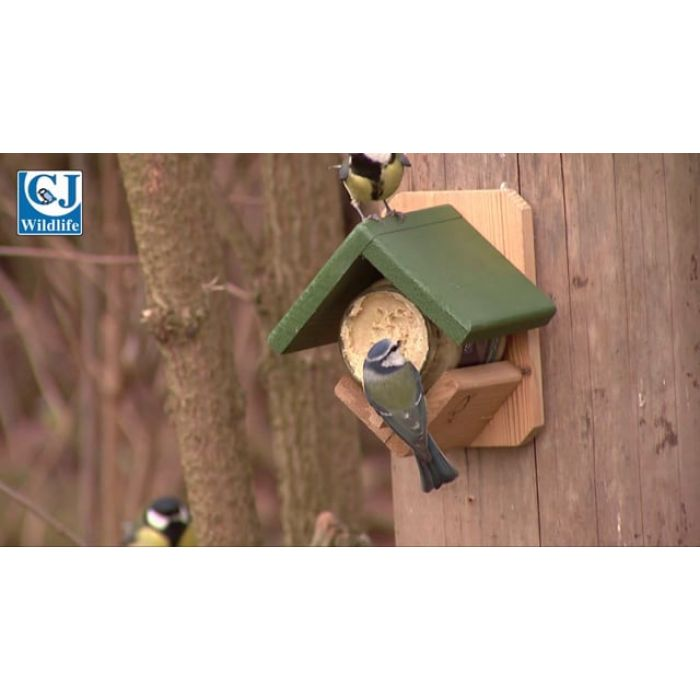 Peanut Butter for Birds with Nuts