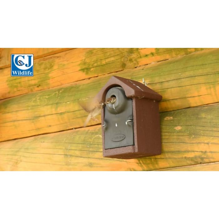 WoodStone® Bilbao 32mm Oval Hole Nest Box