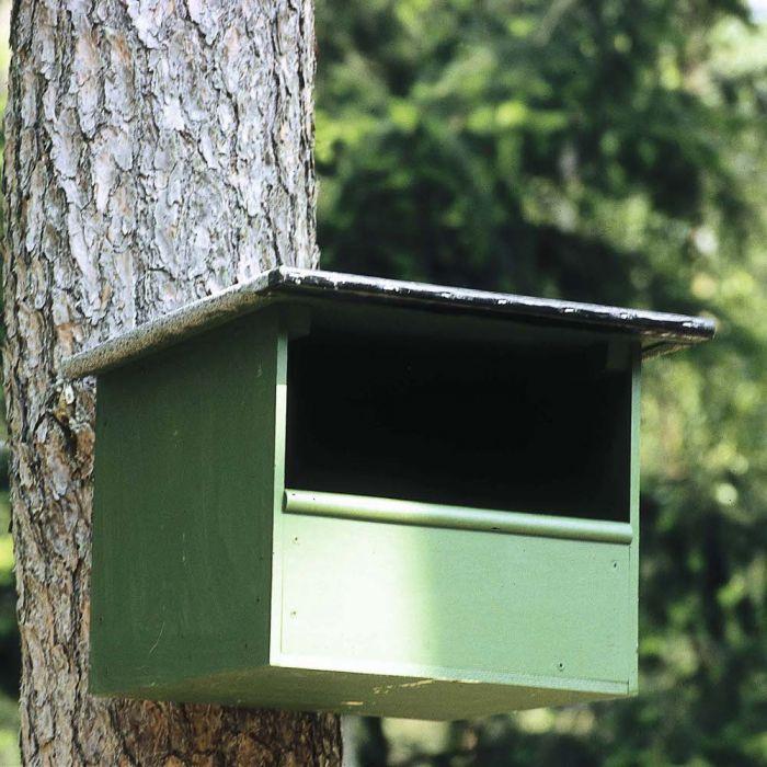 Kestrel Nest Box