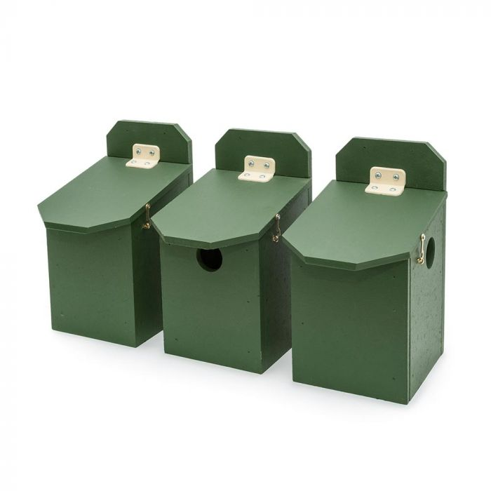 Eco-Plate House Sparrow Multi Box - Right