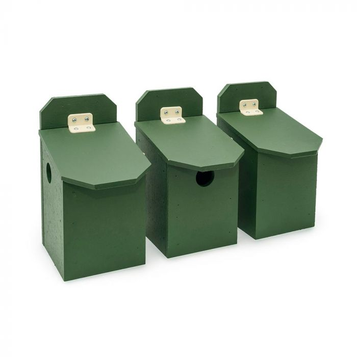 Eco-Plate House Sparrow Multi Box - Middle