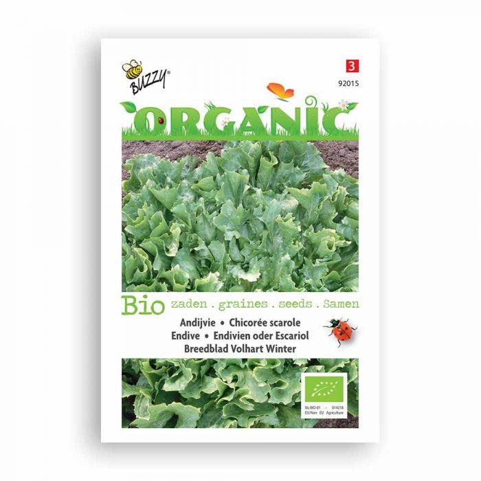 Buzzy® Organic Endive Avantgarde Seeds