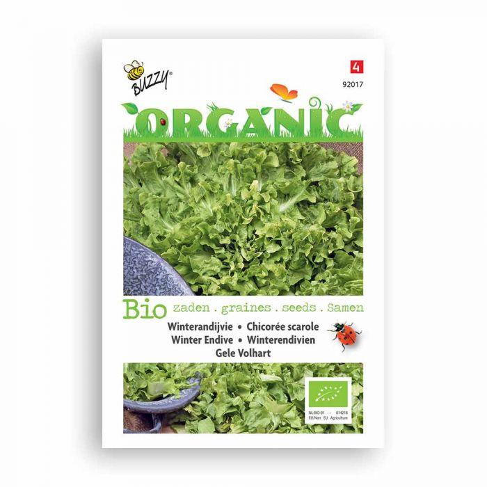 Buzzy® Organic Endive Seeds - Blonde A Coeur Pl.