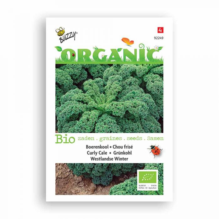 Buzzy® Organic Curly Cale Seeds - Westl. Winter