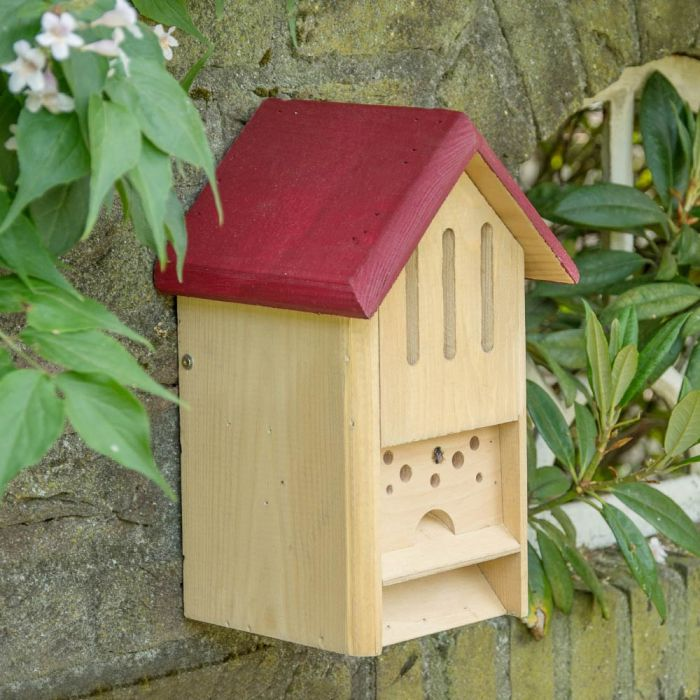 Butterfly and Bee Hotel