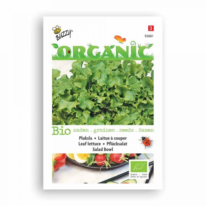 Buzzy® Organic Leaf Lettuce Seeds - Green Salad Bowl