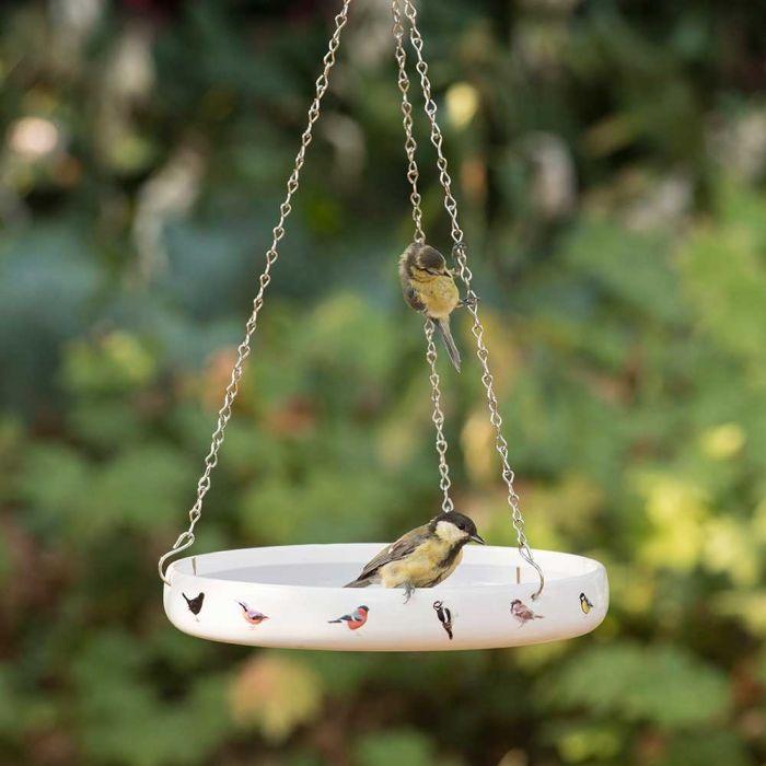 Garden Birds Bird Bath