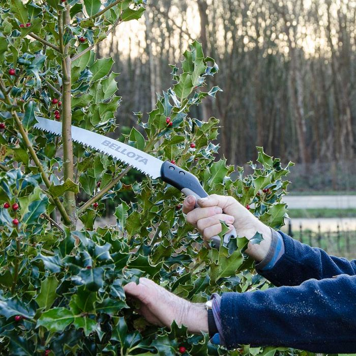 Pruning Saw (with 33cm blade)
