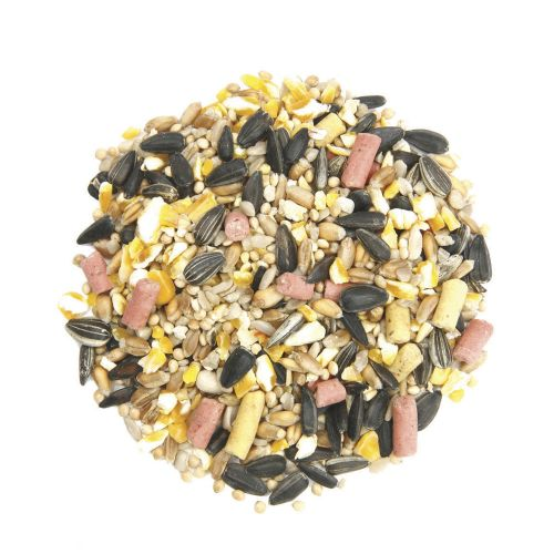 Table Seed with Suet Pellets