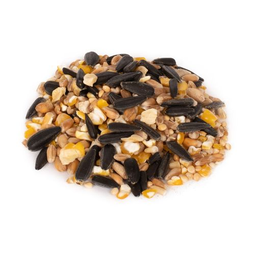 Green+ Table Seed Mix 2,5 kg