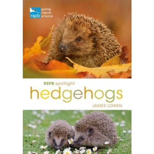 RSPB Spotlight: Hedgehogs Book