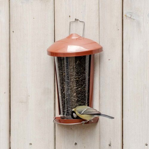 Delos Seed and Mealworm Bird Feeder - Red