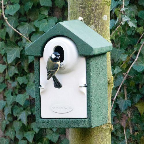 WoodStone® Seville 32mm Oval Hole Nest Box (Green)