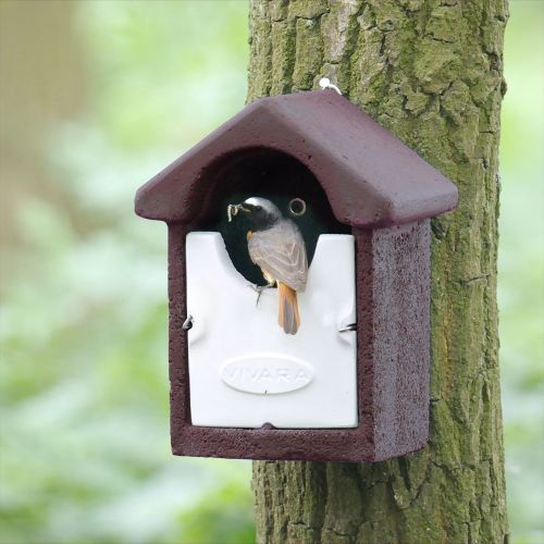 WoodStone® Barcelona Open Nest Box (Brown)