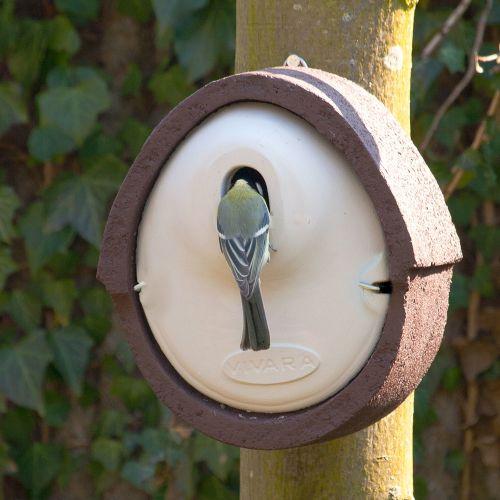 WoodStone® Alicante 32mm Oval Hole Nest Box (Brown)