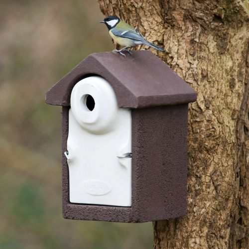 WoodStone® Seville 32mm Nest Box (Brown)