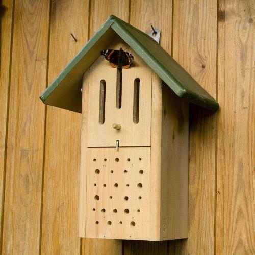 Butterfly & Bee Box - Green