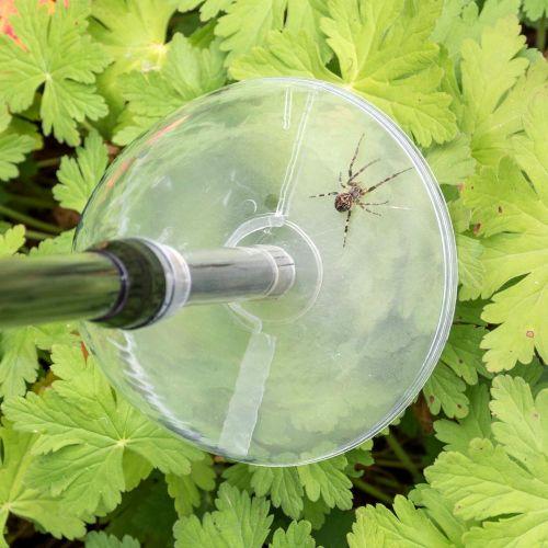 Spider Catcher - Bug Away Insect & Spider Catcher