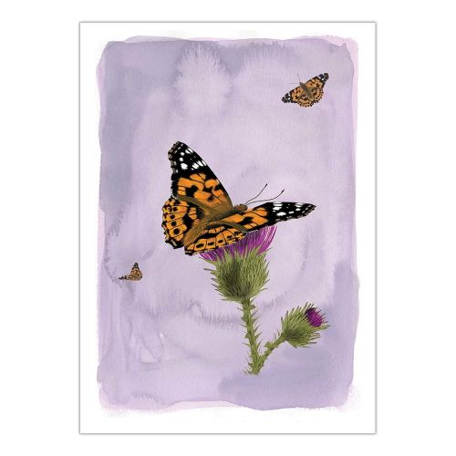 Myrte Painted Lady Butterfly Card