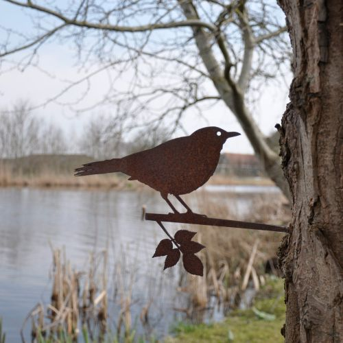 Metal Bird Black Bird