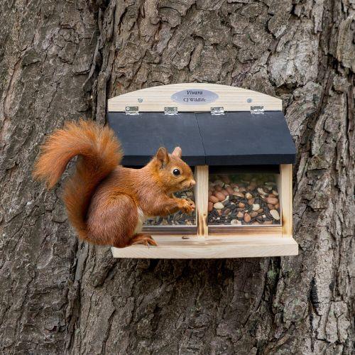 Galiano Double Squirrel Feeder
