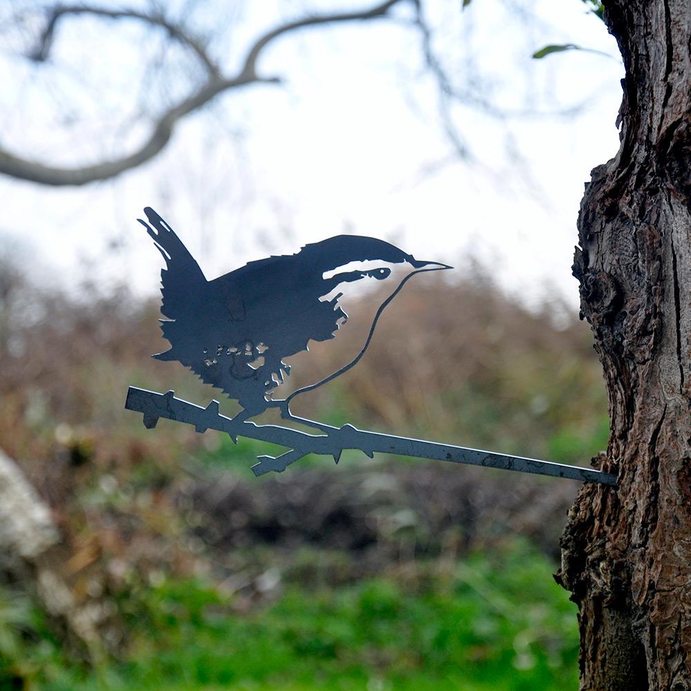 Metal Bird Wren