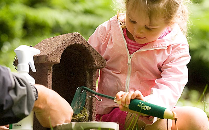 A young girl helping clean a nest box
