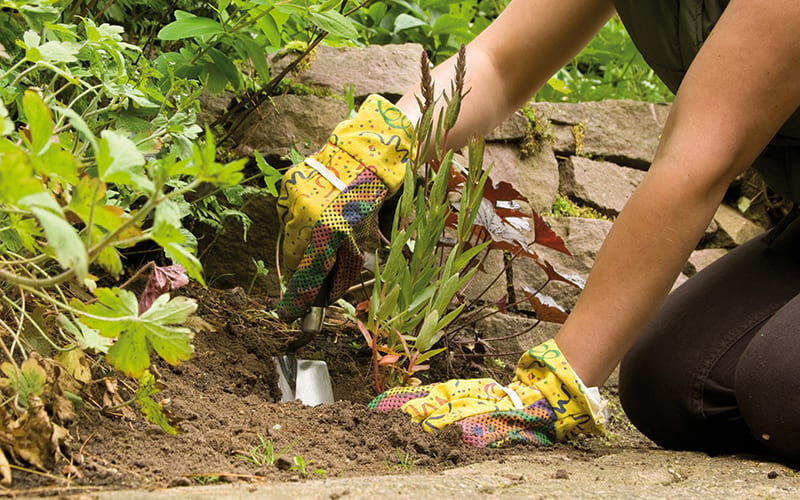 A gardener digging a hole